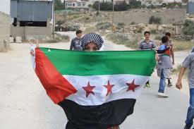Una palestina sostiene una bandera que combina la siria revolucionaria con la palestina.